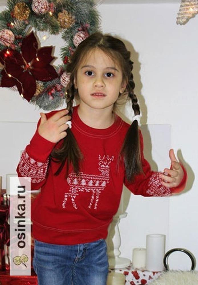 Фото. Новогодняя вышивка. Автор работы - dashustik