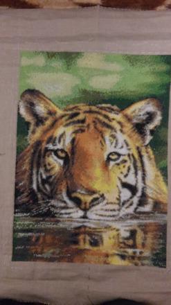 """Фото. """"Водный тигр"""".    Автор работы - Чапали"""