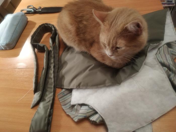 Фото. Мой помощник!  Я на работу, а он за шитьë. Фото - Хохлома