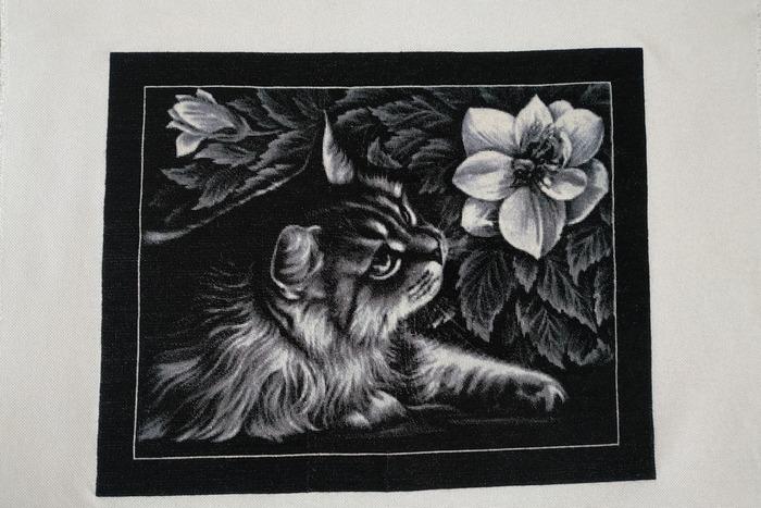 """Фото. Химера """" Кот и пчёлка"""". Автор работы - LanLana"""