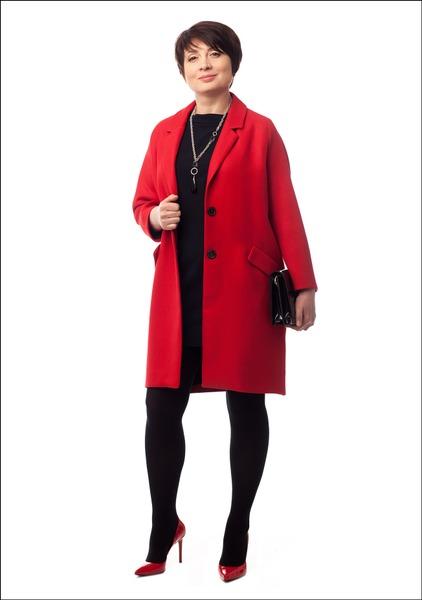 Комплект №2 . Пальто – Zara. Платье – Monton. Туфли и клатч – «Эконика»