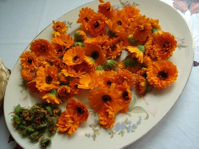 Фото. Цветки календулы - очень распространенный компонент мыла ручной работы.  Фото - OliJul