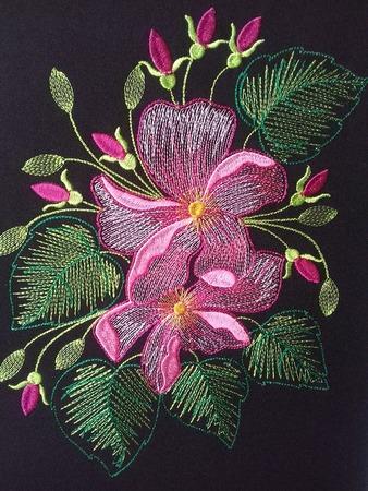 Фото. Цветы. Машинная вышивка.  Автор работы - olga201076