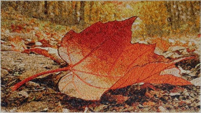 Фото. Осень наступила.    Автор дизайна и работы - Skarapey