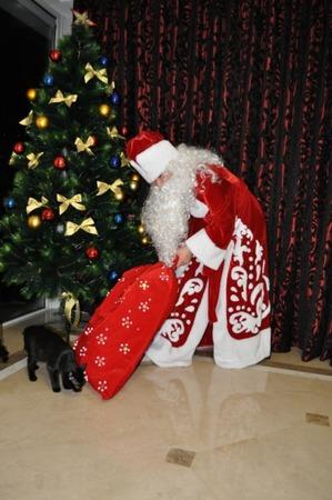 Фото. Дед Мороз с главным атрибутом,мешком с подарками.Автор работы - Hatis