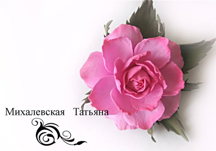 Фото. Брошка. Автор работы - Victoriya1