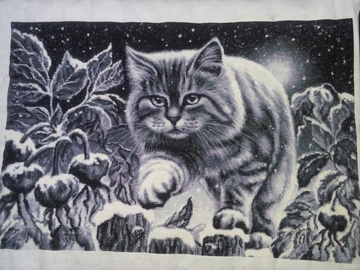 Фото. Снежный котик.  Автор работы - lario-alena