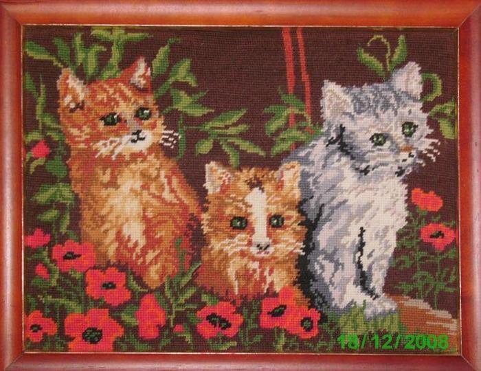 Фото. Картина с котятами.
