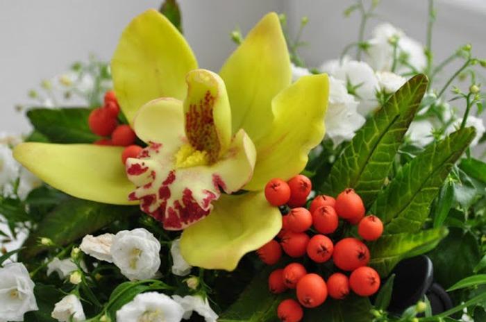 Фото. Орхидеи.  Автор работы - YaDandy