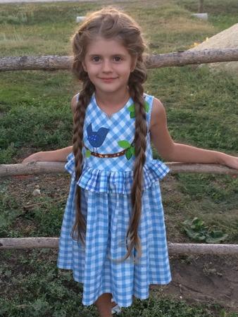 """Фото. Летнее платье для дочки изо льна с аппликацией """"Птичка""""."""