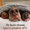@Tatyanochka1976
