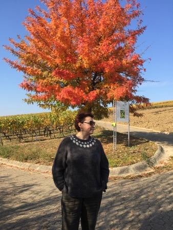 """Фото. """"Черри"""" от Мидори, очень понравилось описание, продумано, но просто и быстро. Очень крутая эта японка!"""