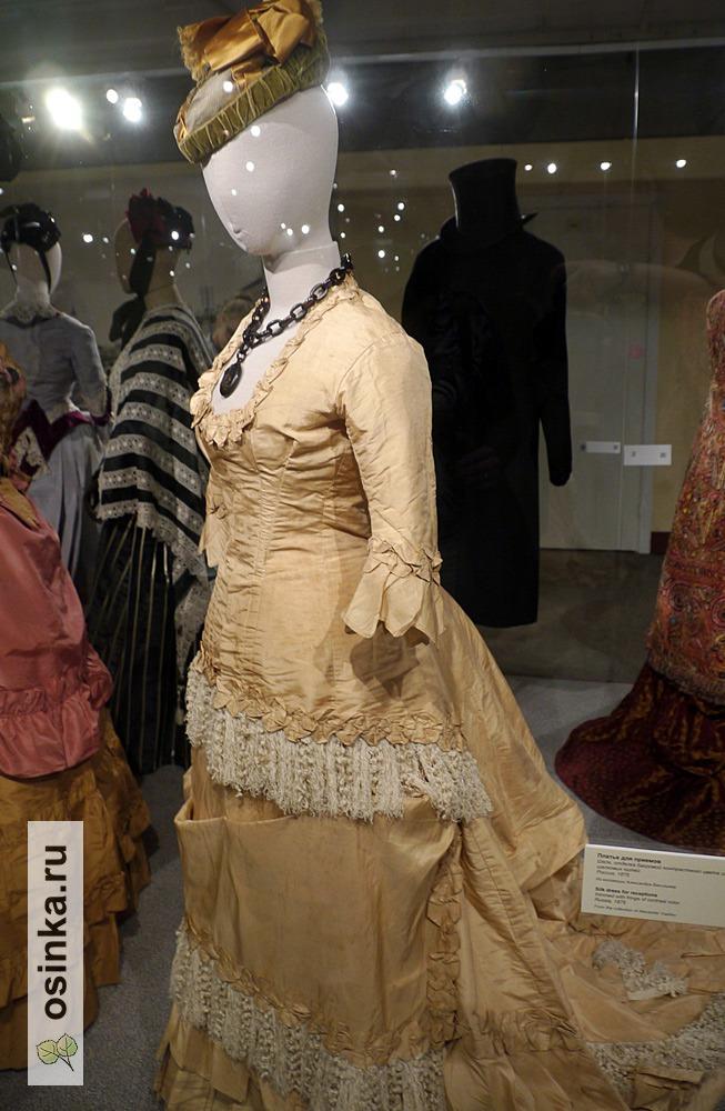 Фото. Платье для приемов, шелк, отделка бахромой контрастного цвета из шелковых нитей. Россия, 1875 г.