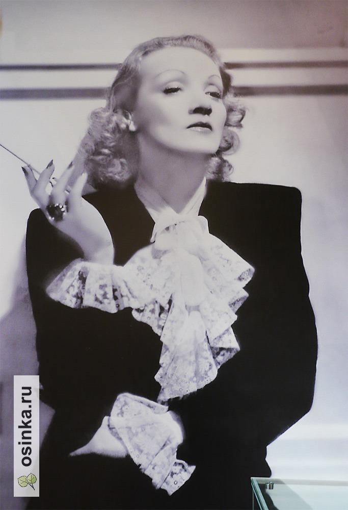 Фото. Одна из кинодив 40-х - знаменитая Марлен Дитрих.