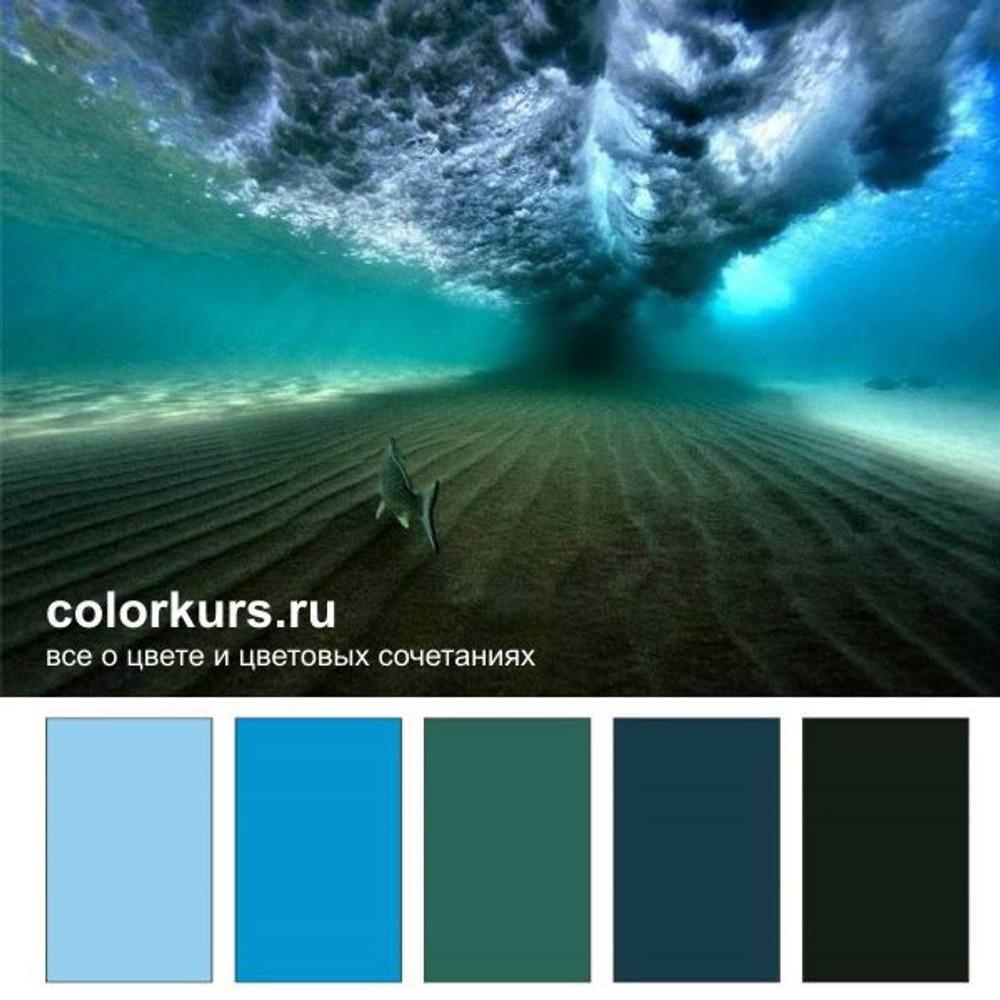 Фото. Глубокая палитра сине-зеленых красок. Гавайи, подводный кадр.