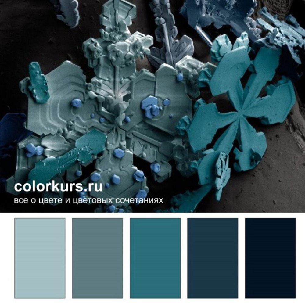 Фото. Цветовые гаммы, базирующиеся на глубоких и светлых сине-бирюзовых цветах, создают деловую, профессиональную атмосферу. Поэтому в таких цветах всегда отлично смотрятся деловые костюмы, интерьеры переговорных комнат и прочие, связанные с бизнесом, объекты.