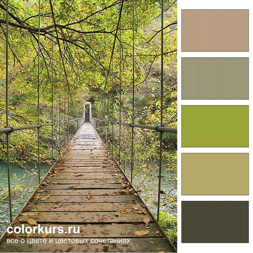 Фото. Палитра в бежево-зеленой гамме дает ощущение спокойствия с проблесками юной энергии. Деревянный мост, Galacia, Испания.