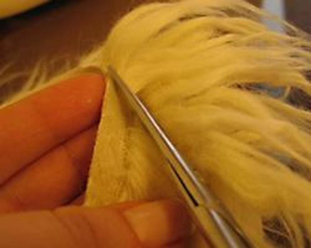 Фото 7. Выстригаем полоску меха с обрабатываемого среза