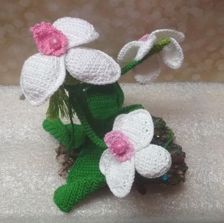 Фото. Орхидея.  Автор работы - C_OBBRA