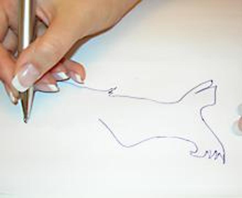 1. Сначала выбираем понравившийся мотив. Обводим или рисуем его на обычном белом листе.