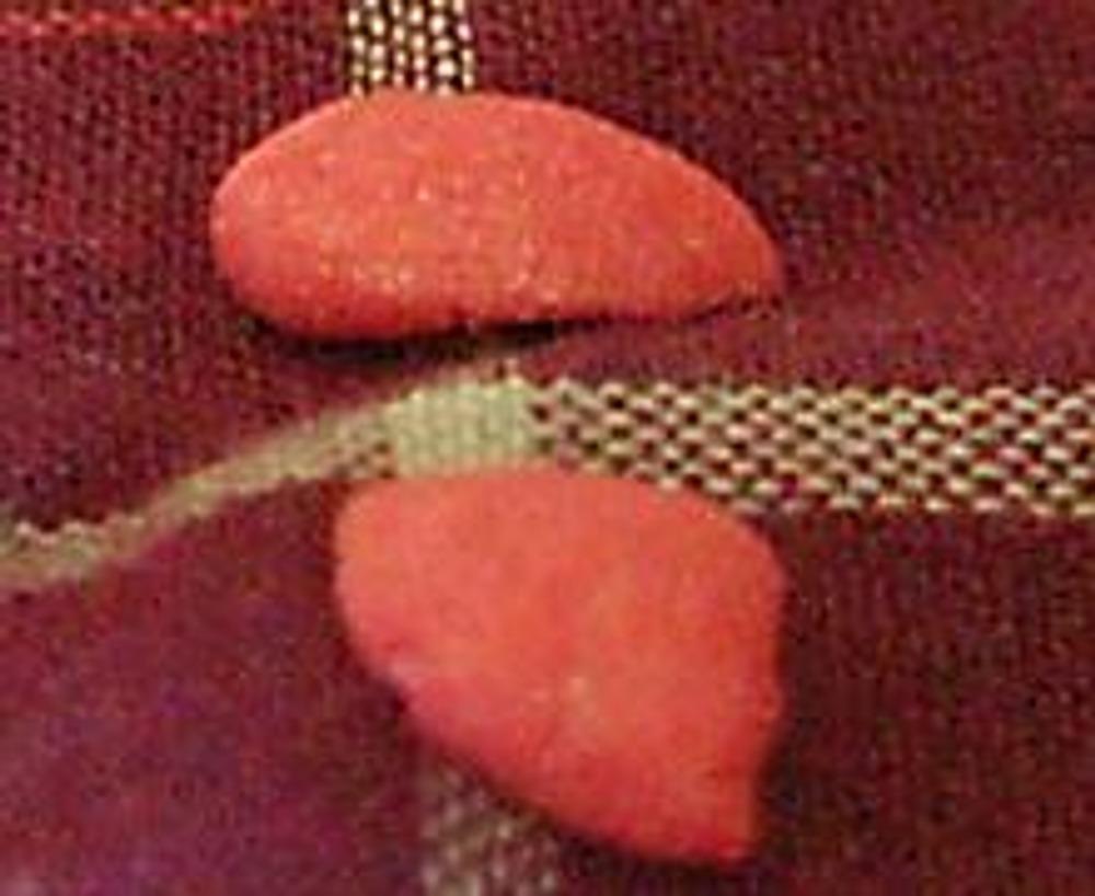 2. Далее, маленькие кусочки пластика раскатайте до размера кукурузных хлопьев. Основание его делайте округлым, а кончик заостренным. Но так как лепестки разные встречаются, их форма зависит только от вашей фантазии.