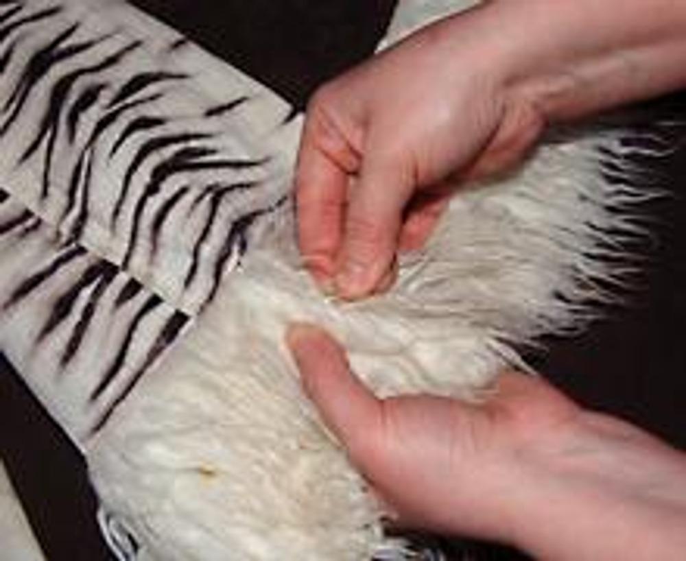 6. Приколите мех булавками к брюкам, постепенно оборачивая полоску вокруг штанины.