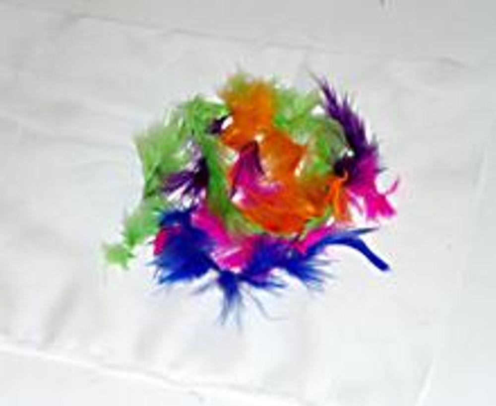 2. На ткани разложите перышки, как вам нравится. Перышки еще можно заменить пестрой тканью.