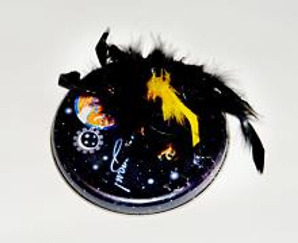 4. На крышку, в хаотичном порядке, приклейте перышки. Перья не обязательно должны быть цветными, вполне подойдут серые или пестрые, например, от старой метелки для пыли или подушки.