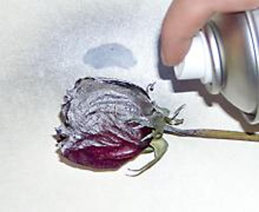 1. Засушенный цветок покройте серебряной краской и подождите, когда она высохнет.