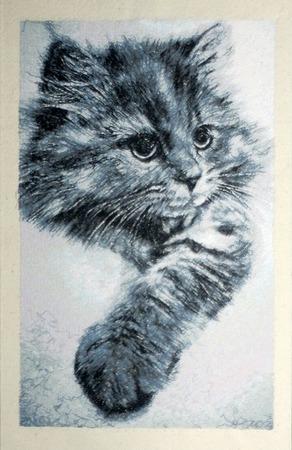 Фото. Котиков много не бывает.   Автор работы - Skarapey
