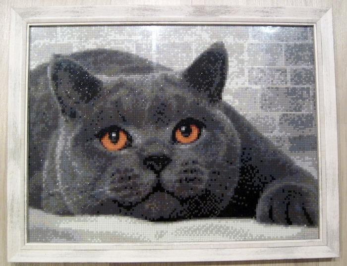 """Фото. """"Британский кот"""", Алмазная живопись. Размер 30х40 см. Автор работы - Itsme64"""