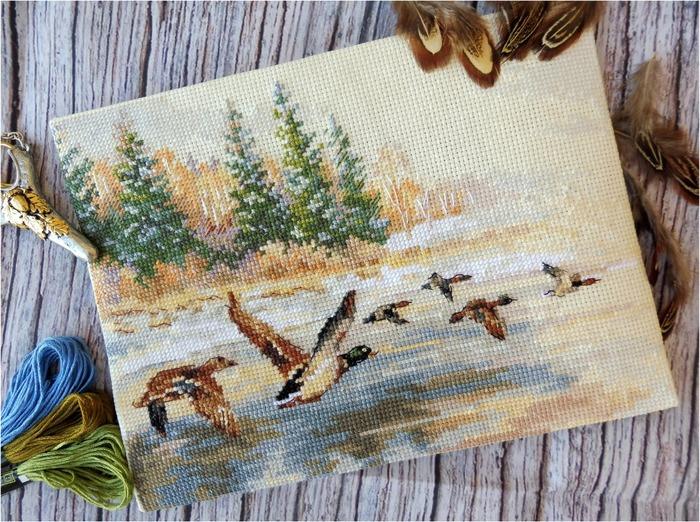 Фото. Летят утки... Автор работы - viris