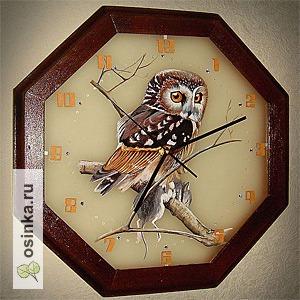 """Фото. Часы """"Совушка"""" выполнены из матового стекла. Правда, красиво? Автор - TatianaZamyatina ."""