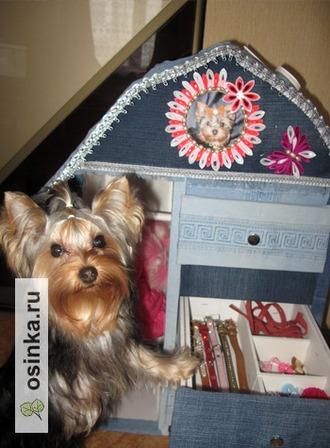 """Фото. Собачьим нарядам может потребоваться и отдельный """"собачий"""" гардероб."""