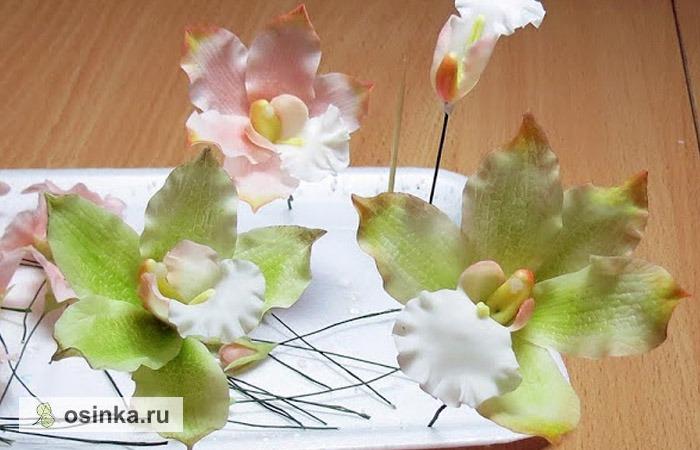 Фото. Вот так рождаются на свет цветочные шедевры: цветки собраны, подкрашены, самое время сложить их в букет. Автор - nadin-r .