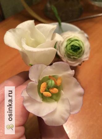 Фото. Самое интересное в керамо-флористике - это создание текстур: нежные лепестки, бархатные тычинки, сочный пестик - все как у настоящего цветка. Автор - pustikator .