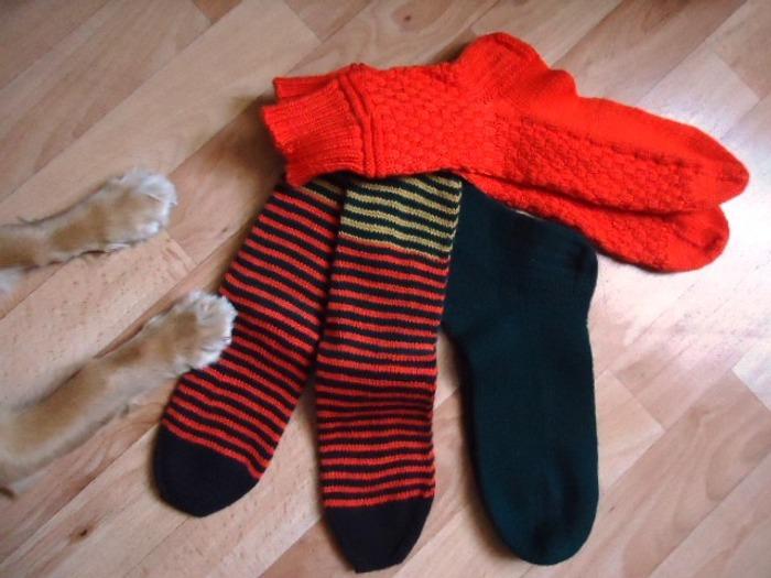 Фото. И я хочу носки!. Автор работы - мари55