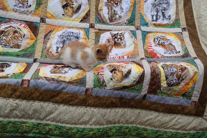"Фото. Одеяло в технике крейзи блок ""Большие кошки"". Автор работы - Анечка-Иванечка"
