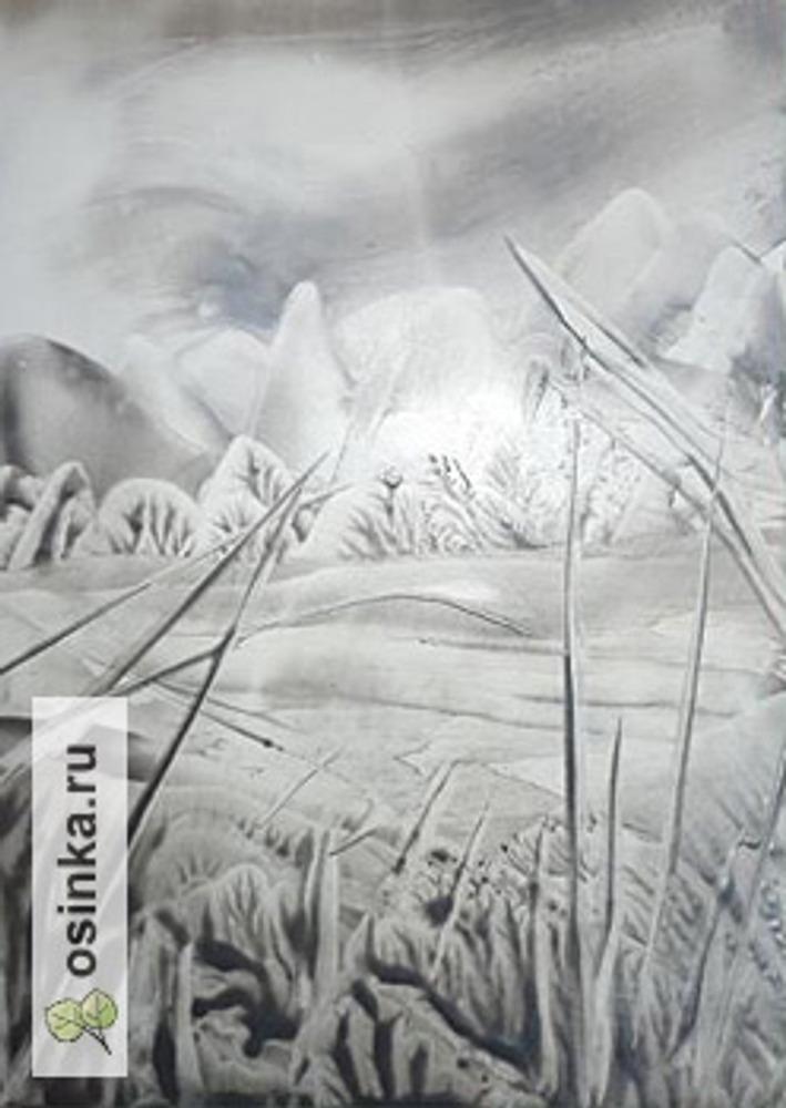 Фото. Зима. Однотонный мелок, энкаустика. Автор работы - ОсиповаОльга