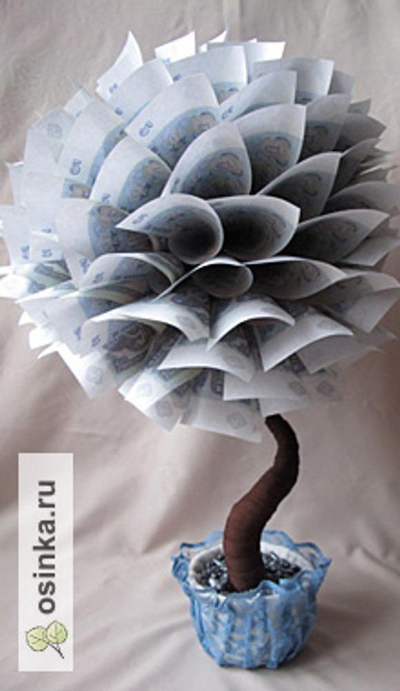 Фото. Топиарий денежное дерево. Автор работы - elkann .