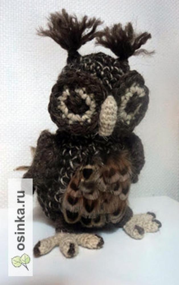 Фото. Вязаная совушка-амигуруми Автор - Viona .