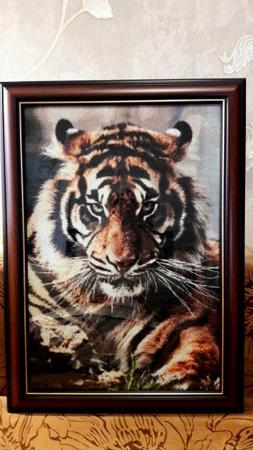 Фото. Вышитый тигр.  Автор работы - IraMrNik
