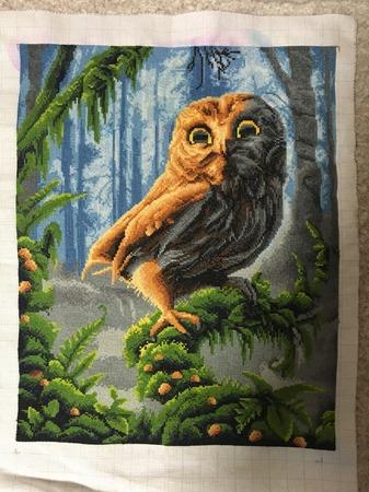 Фото. Совушка в лесу. Автор работы - Alexa_Sky