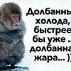 @Pampulya