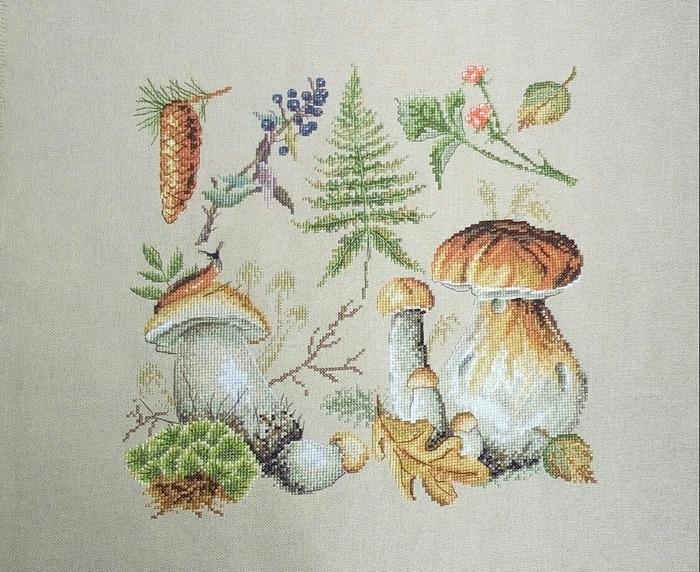 """Фото. Сэмплер по оригинальному набору от Марьи искусницы - """"Белые грибы"""". Автор работы - Natusynok"""